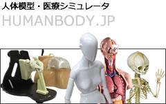 医療シミュレータ・人体模型、ヒューマンボディ